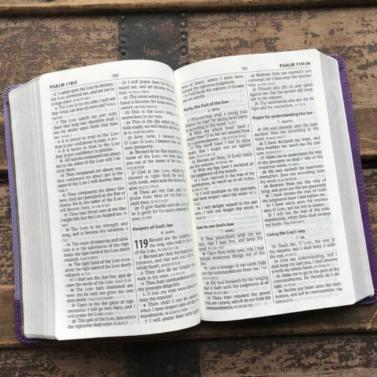 KJV Personal Size Giant Print Reference Bible, Lilac/Violet Flexisoft